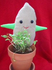 little seedy (misc5anddime) Tags: seed plush