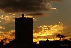 Céu dourado (grandee36) Tags: sunset panorama paraná beautiful brasil landscape interesting nikon tramonto pôrdosol curitiba d80 nikond80 grandee36 fotógrafosdecuritiba vildepedroandreazza