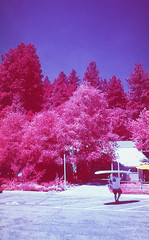 Infrared Lake Arrowhead I (carlfieler) Tags: infrared aerochrome lakearrowhead 35mmfilm analog canona1 28mm 28mmlens