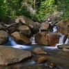 #D500 #Nikon #NikonD500 #Penang #Malaysia #Slow_shutter #Waterfalls #نيكون #شلال #ماليزيا #بينانغ #2017 #سياحة #غرد-بصورة #تصويري #من-تصويري #كام (Alyahya ( اليحيـى )) Tags: d500 nikon nikond500 penang malaysia slowshutter waterfalls نيكون شلال ماليزيا بينانغ 2017 سياحة غرد تصويري من كام