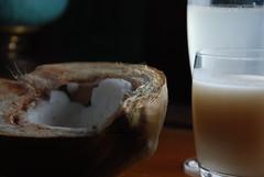 coconut meat, milk, and water (kthread) Tags: food water milk coconut miami magic cottage meat local kthread