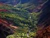 Waimea canyon (d.lindholm) Tags: usa hawaii nikon canyon kauai waimea tropicalbird e7600