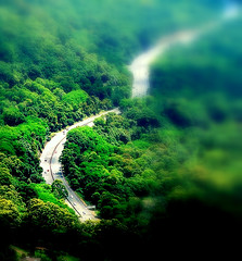 Tilt-shift miniature fake: Down the Hill (Thiru Murugan) Tags: trip travel summer green cars forest photomanipulation photoshop landscape toy miniature cs2 fake sunny lookout evergreen environment lush tilt wollongong fakes murugan sydneyroad tiltshift thiru minicars pollutionfree mtkeira thirumurugan thiruflickr