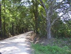 Quarterman Road