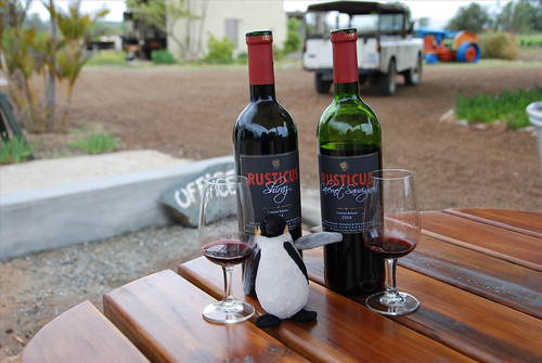 Mini Wolfgang visits Rusticus Winery!