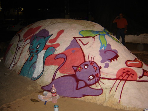 Pedra gato