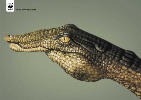 WWF_Krokodil