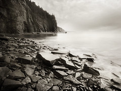 Elements (IrenaS) Tags: blackandwhite bw canada nature monochrome landscape cliffs newbrunswick capeenrage