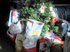 angel tree for homeless pets