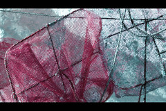 Conchyliculturel (Fredaniane) Tags: abstract artistic expression textures artisticexpression étangdethau fotochopé