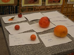 """Kaki festival"" prizes for largest and smallest kaki (Susan&Joe) Tags: kocjan kakifestival"