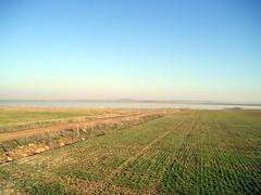 Boada de Campos (Palencia). Agua mar y tierra (rabiespierre) Tags: laguna palencia tierradecampos boadadecampos