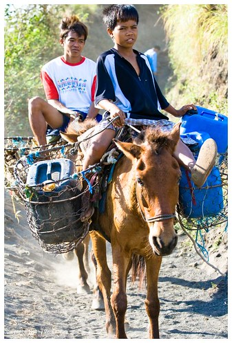 Taal boys, horses, water containers Buhay Pinoy Philippines Filipino Pilipino  people pictures photos life Philippinen  rural scene igib