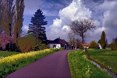 Overdiemerweg, Diemen (sandrosamigos) Tags: road pink blue trees sky green grass yellow clouds bomen groen blauw farm nederland thenetherlands wolken etc gras lucht geel weg roze boerderij overdiemen hdrset overdiemerweg diemerhoeve