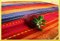 Colorissima (clarettina) Tags: red colors yellow strawberry giallo rosso colori fragola totalphoto