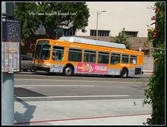 橘色的metro bus 一直穿梭在LA DOWN TOWN