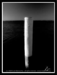 ocean blackandwhite bw water sunrise photography bay photographer outdoor sydney australia olympus pole wharf stgeorge botanybay purpose e330 dollspoint maxys maxmedia scottmaxworthy sgmdigital