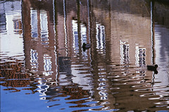 House reflections and ducks @ Oudewater (PaulHoo) Tags: oudewater city holland netherlands water reflection building duck animal peaceful sun light ripple pattern texture 2017 nikon f5 agfa vista film 35mm analog urban house
