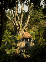 Shell House, Tresco Abbey Garden (seaslater) Tags: abbeygarden scilly shellhouse tresco