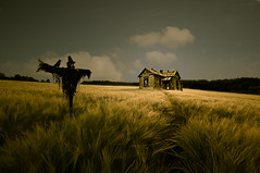 Welcome to my nightmare (George Goodnight) Tags: light sky cloud house nature field photomanipulation photoshop landscape nikon scarecrow dream oldhouse nightmare hauntedhouse composing welcometomynightmare omot nikond300 artistictreasurechest