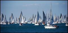 Barcolana - sailing - by kiki99