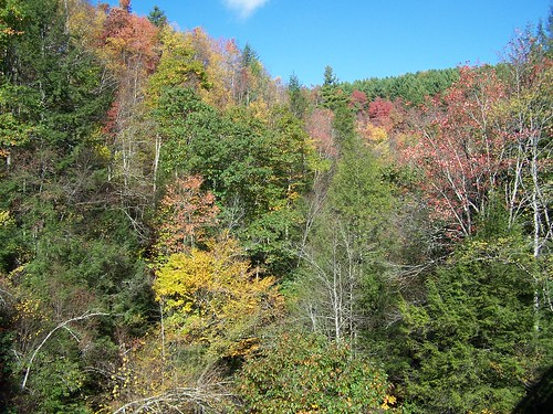 virginia mountains fall foliage
