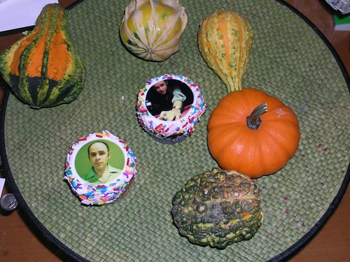 Todd Barry Cupcakes and Gourds