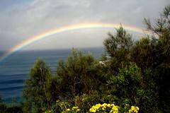 Rainbow 1 (lotus8) Tags: ocean rainbow lookout nsw evanshead lotus8 firsttheearth