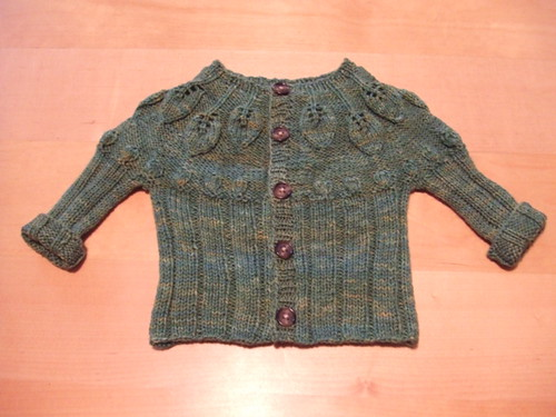 111907 leaf cardigan finished