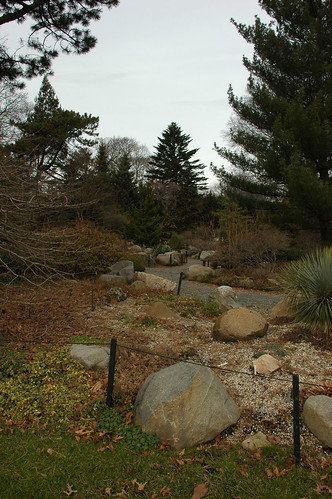 Rock Garden, Brooklyn Botanic Garden
