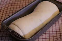 Rolled up loaf in pan that's risen and ready to go in the oven