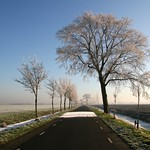 Beemster: Hobrederweg landscpae in winter