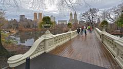 Central Park (..Javier Parigini) Tags: usa unitedstates estadosunidos newyork newyorkcity manhattan nyc centralpark nuevayork xmasspirit xmas navidad espíritunavideño christmas christmasspirit nikon nikkor d800 1424mm f28 flickr javierparigini