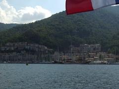IMGP1446 (sea urchin 1062) Tags: flotilla