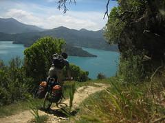 Queen Charlotte Track (B A Hockman) Tags: newzealand freedom track mountainbike trail biking nz mtb ontheroad touring onthetrail marlboroughsounds panniers queencharlottetrack onyerbike marlboroughexploration