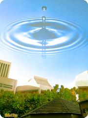 Rain (qatari star) Tags: blue trees tree green university bond doha qatar تصميم قطر الدوحة جامعة كلية مبنى الهندسة