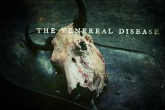 the veneral disease