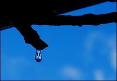 Happy Drop! (Nanynany) Tags: water happy nikon flickr drop gota encuentro venezolanos nany nanynany nanyleon nanynanycom d40x solovenezolanos happydrop wuarairarepano