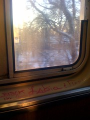 Quita (theres no way home) Tags: pink chicago train graffiti cta marker l labia