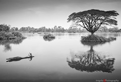 DON DET/riverscape reflections (inigolai) Tags: travel trees people bw woman tree reflections river landscape island monocromo boat southeastasia paisaje olympus bn e3 laos dondet zuiko mekongriver riverscape zd distorsions 1260mm earthasia travelplanet worldwidetravelogue mordusdephotos