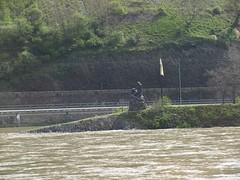 Rhine River Apr 08 049 (MurphMutt) Tags: castle germany rhineriver