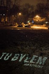 Wycinka na ul. Frascati w Warszawie - tu byłem