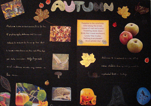 Clara's Autumn Project