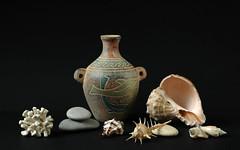 ... (AlexEdg) Tags: stilllife coral 50mm nikon stones shell stilleben nikond70s vase seashell 2007 homestudio coralskeleton anawesomeshot alexedg alledges