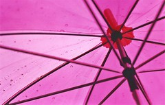 rain (*Juliabe) Tags: pink london film rain umbrella contax raindrops paraguas ferrania contax139q ferraniasolaris200