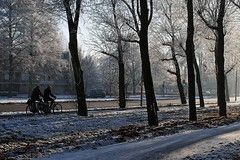 2007_12_22DSC_9875_d01 (iVOMiMiBoRE) Tags: trees winter snow holland tree netherlands nijmegen frost nederland frostedtrees winterinholland frozentrees malvert winterinthenetherlands