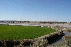 pakistan frontier