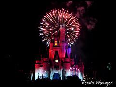 holiday wishes (* Rezinha *) Tags: orlando florida fireworks character disney waltdisneyworld magickingdom personagem fogosdeartifcio mickeysverymerrychristmasparty holidaywishes frias2007 celebratethespiritoftheseason