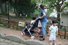 新竹市立動物園11