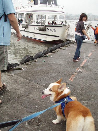 台北淡水河 2008/4/12
